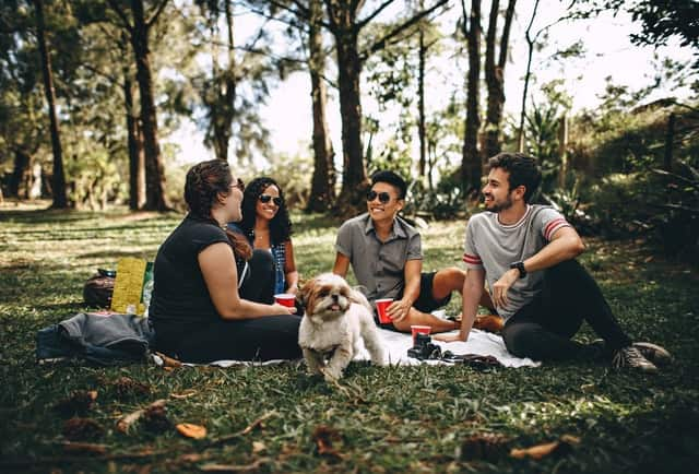 Dog Friendly Parks in Liverpool, NSW