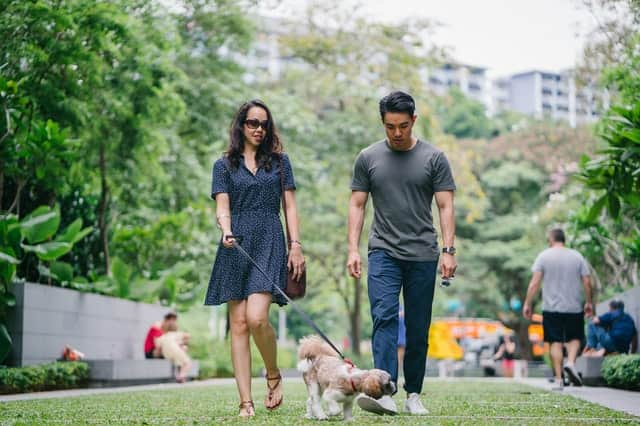 Dog Friendly Parks in Quakers Hill, NSW